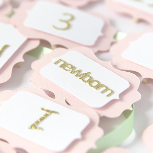 First Birthday 12 Month Photo Party Banner |  Pink & Gold