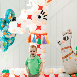 Birthday boy party ideas for llama inspired party Shop balloons in Bristol Helium balloons best party shop clifton